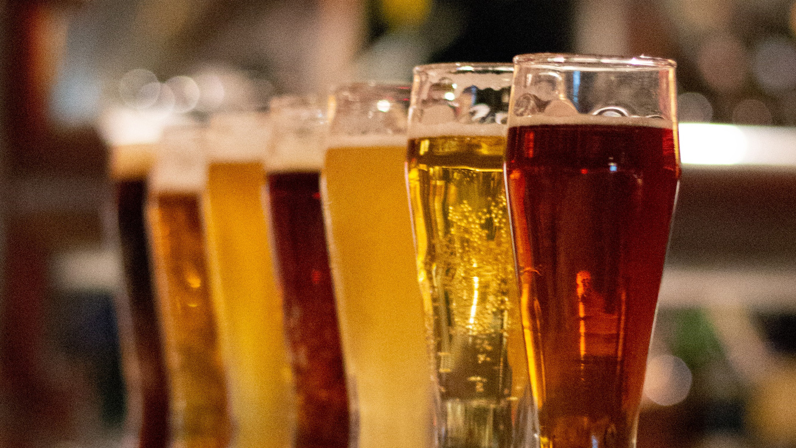 A line-up of sample-sized beers of different varieties